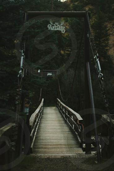 brown wooden bridge photo