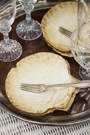 shells ocean beach sand plate dining  photo