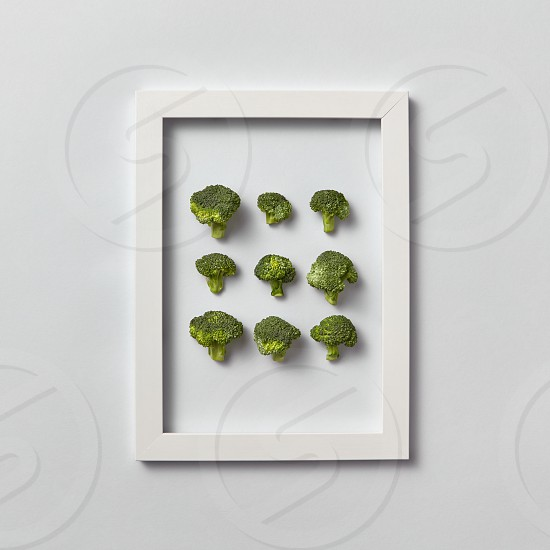 Creative pattern of natural freshly picked organic broccoli in a frame on a light gray background place for text. Top view. Vegetarian food concept. photo