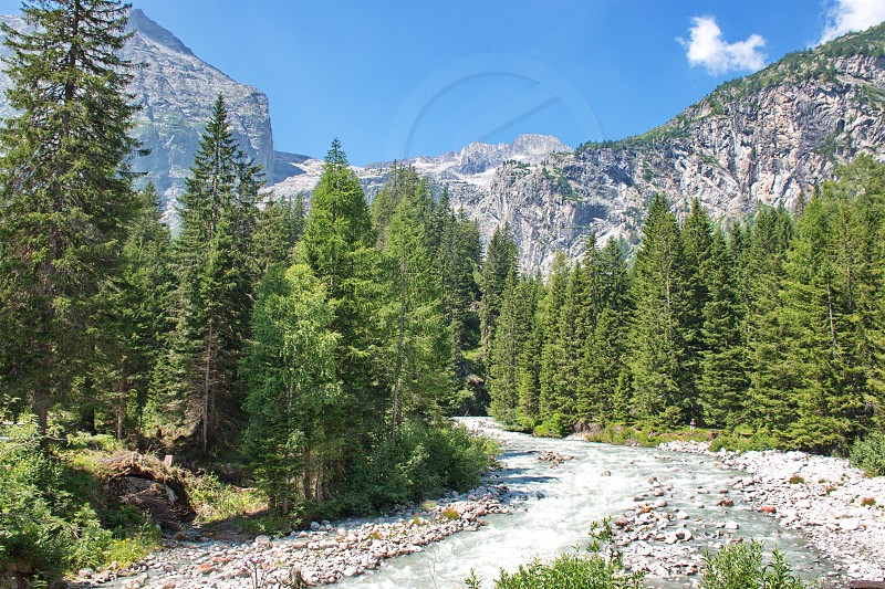 Stream flowing through the woods in Brenta Dolomites in Italy with rocky landscape in the background photo