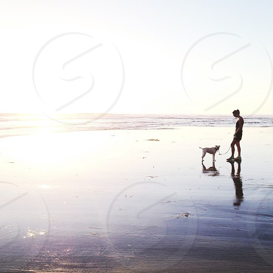 woman with a dog on seashore photography photo