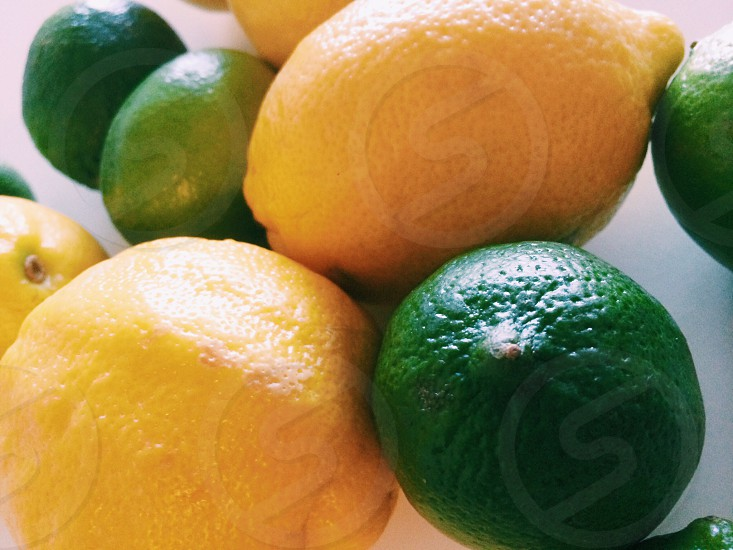 citrus and lemons in close up photography photo
