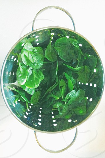 Spinach in an aluminum colander  photo