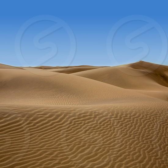 Desert dunes sand in Maspalomas Oasis Gran Canaria at Canary islands photo