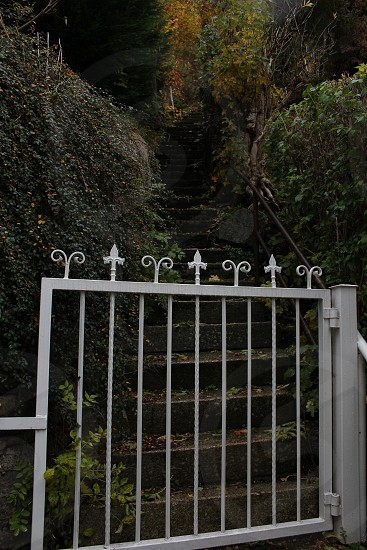 gate stairs steps color photo