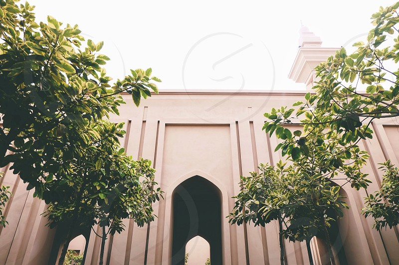 This is one of the beautiful mosque ever build in my city Shah AlamMalaysia. This photo was taken in the morning where that lovely light reflect directly to the trees and i just love this view.  photo