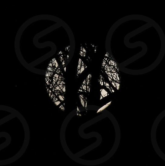 Super moon May 2012 photo