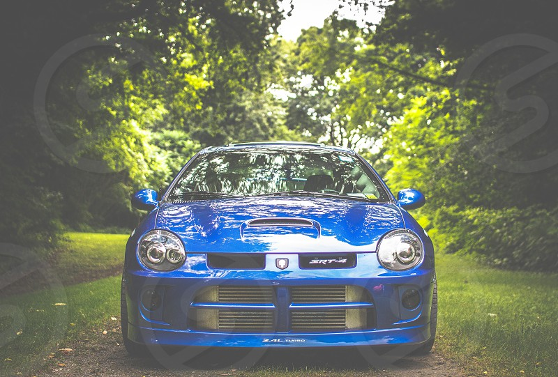 blue Dodge car on road covered green grasses between trees photo