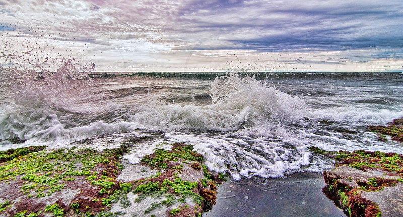 Vivid Splash photo