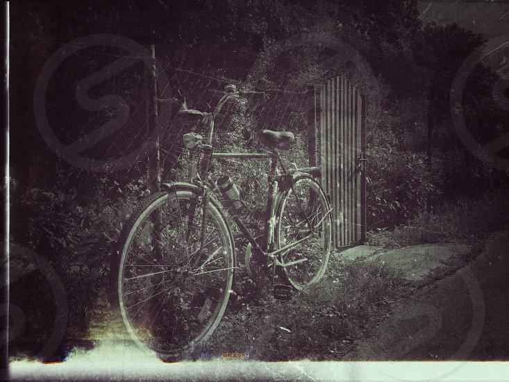 Abandoned... photo