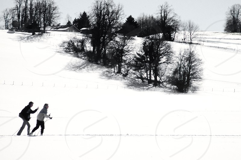 Two active cross country skiers following an x-country ski track across snowy winter landscape exercising winter sports photo