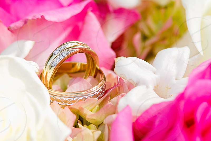 Gold wedding bands rest in a pink and white bouquet of flowers photo