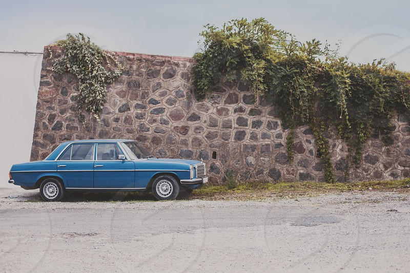 blue and white sedan beside cobblestone wall with green leaf plant photo