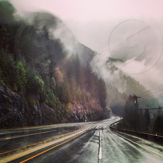road beside hill with trees with fogs photo photo