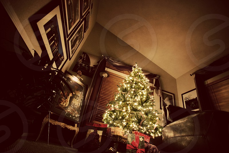 A Christmas Tree in a living room.  Night bright dark lights pine holidays celebration photos frames gifts. photo
