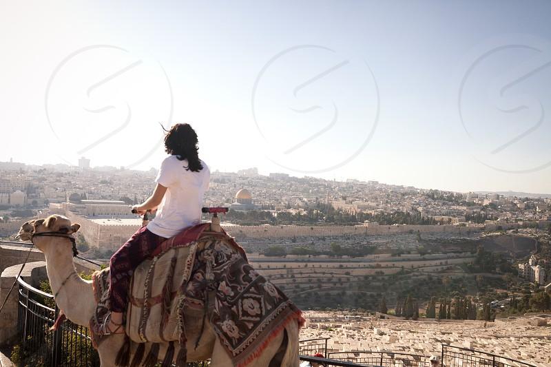 camel jerusalem israel mount of olives photo