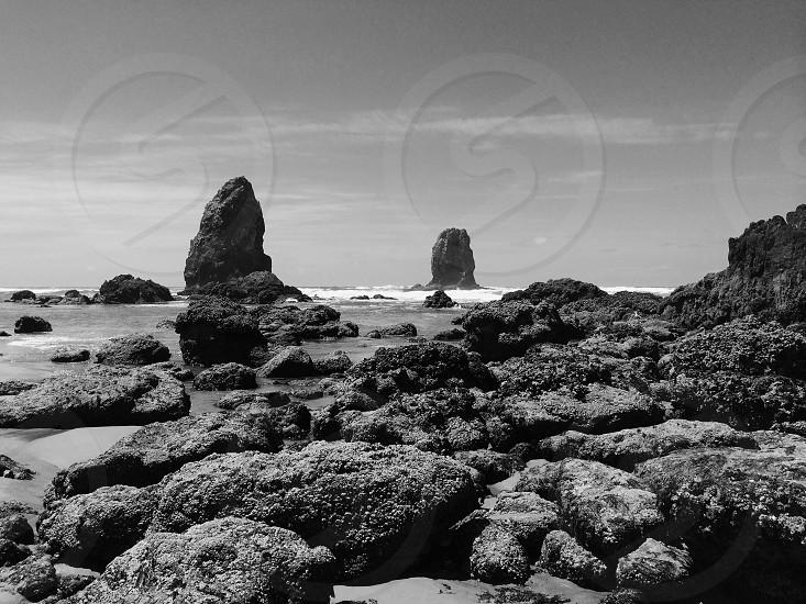 seashore black and white photography photo