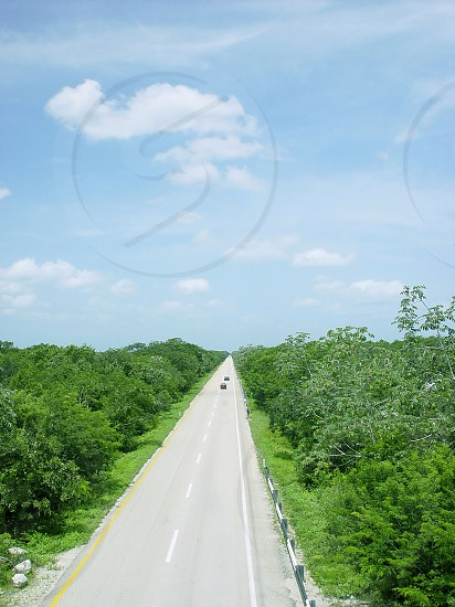 jungle road aerial view in central america mexico photo