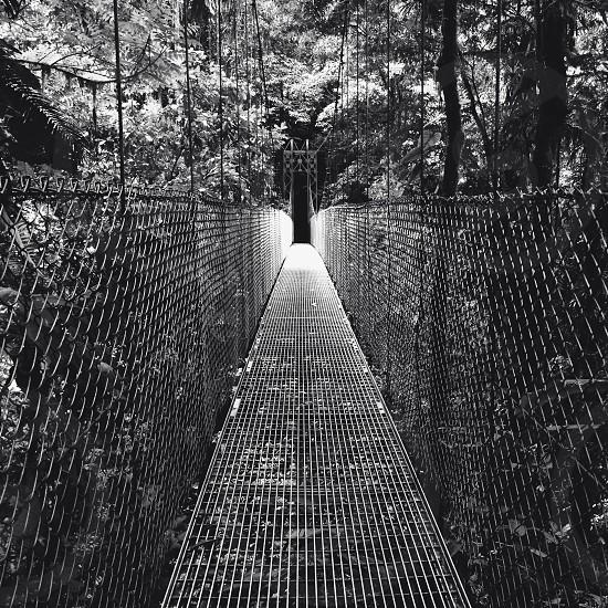 Black and white metal walking bridge photo