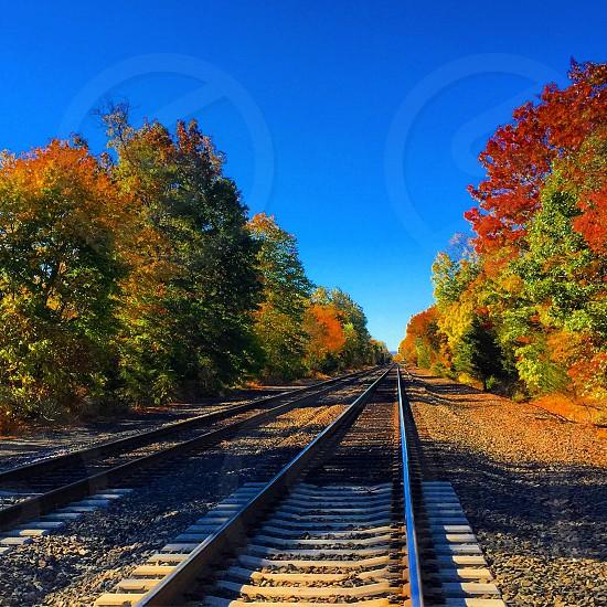 Fall in NJ photo