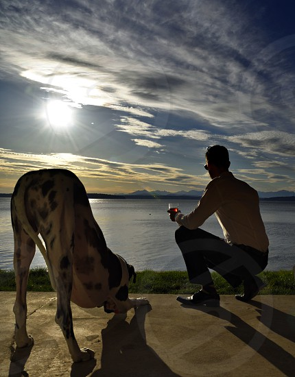 Bow to the sun. Relaxing evening sunset man dog kneeling bowing seaside. photo