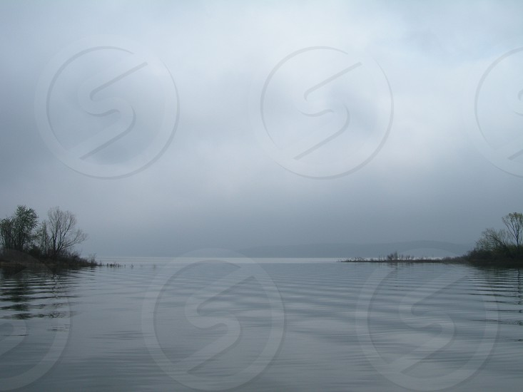 Early morning fog in the cove.  photo