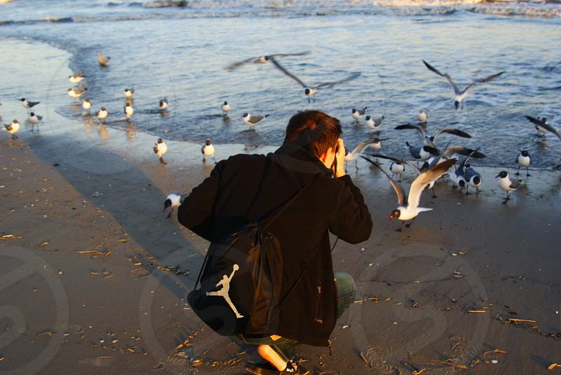 photographers camera beach seagulls photo