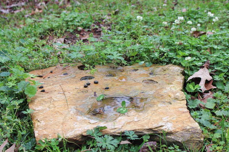 Nature rock photo