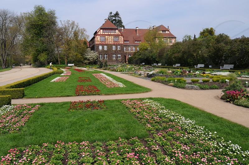 Botanical garden Dahlem in Berlin. Germany photo