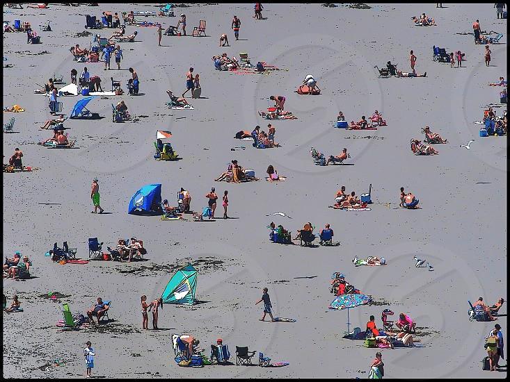 Nantasket beach photo
