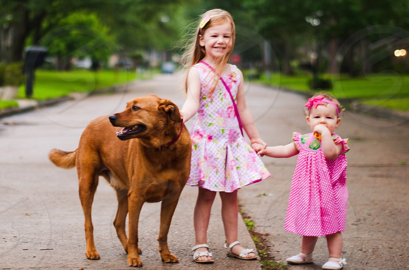 Sisters and dog photo