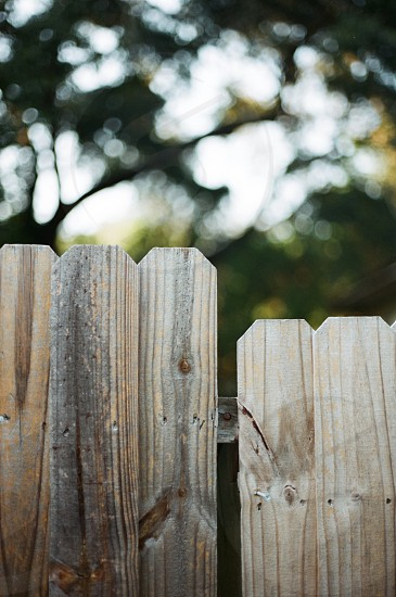 brown wooden fence in focused lens photo