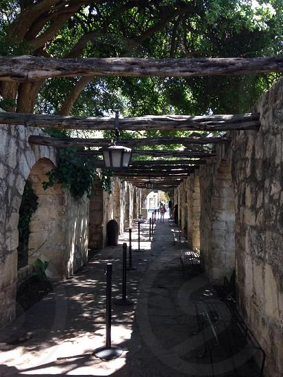 Inside The Alamo photo