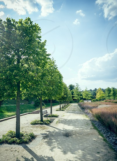Nature Park photo