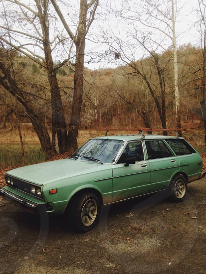 green station wagon parked near tree during daytime photo