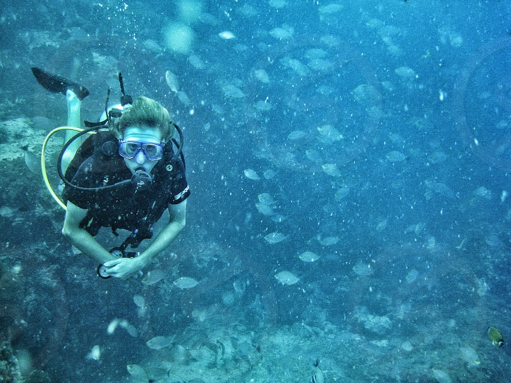 person wearing scuba diving suit under body of water photo