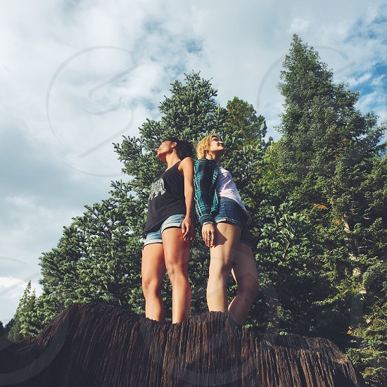 2 women standing on tree stump photo