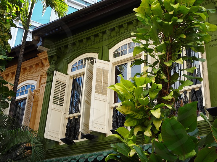 Shutters in Chinatown Singapore.  #architecture #building #window #historic #singapore #colonial #green #trees photo