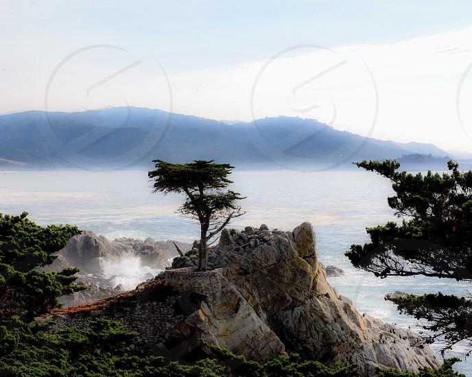 Northern California Pacific Ocean Seventeen Mike Drive Pebble Beach Lone Cypress California Coast  photo