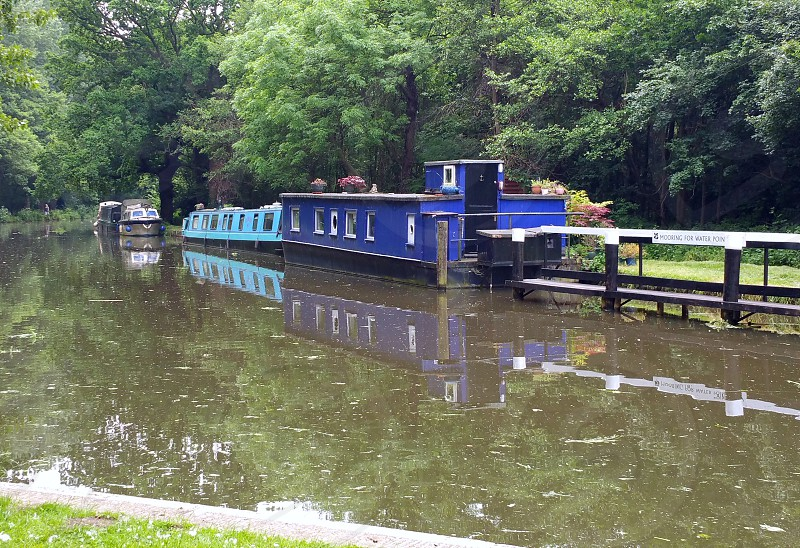 Narrow Boat travelling  boating near Wisley Gardens photo