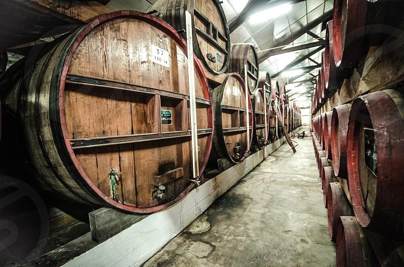 calvados barrel distillery distillation spirits liquor wine barrels barrel aging cellar france normandy photo