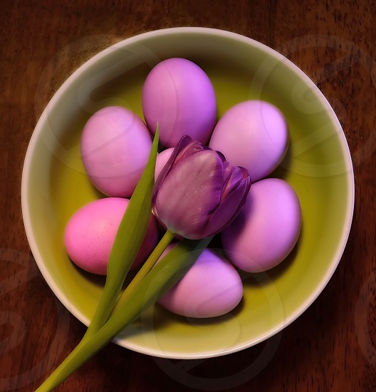 Single tulip resting on a bowl of Easter eggs on wooden tabletop. photo