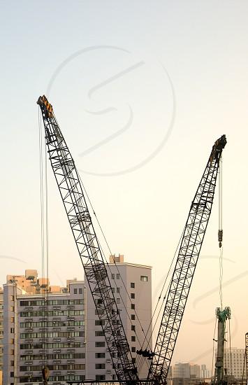 shanghai construction crane over modern buildings photo