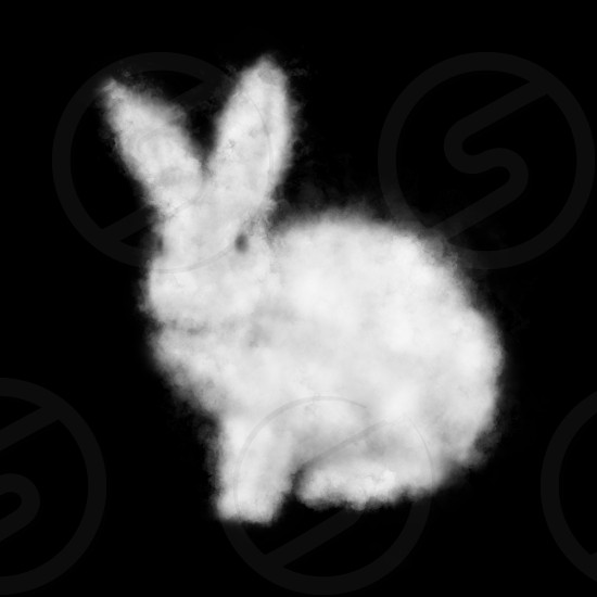Cloud in the shape of a white rabbit on a black background. Easter concept. Traditional Easter Bunny. Photo is easy to use in any design for poster postcard web photo
