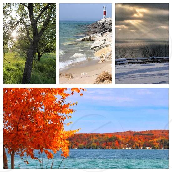 4 Seasons photo