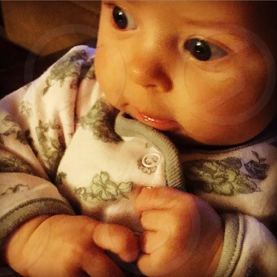 Baby Ivy photo
