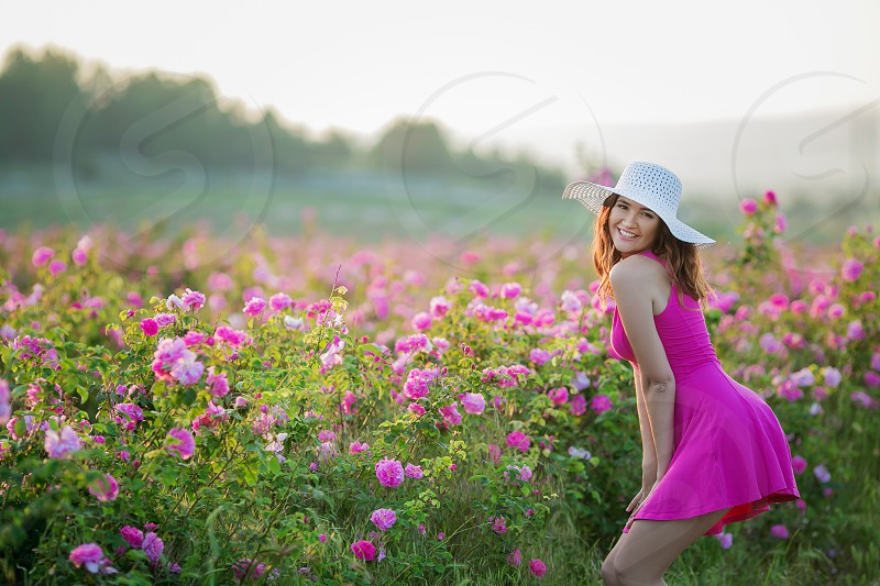 Field of flowers and a girl in a pink dress photo