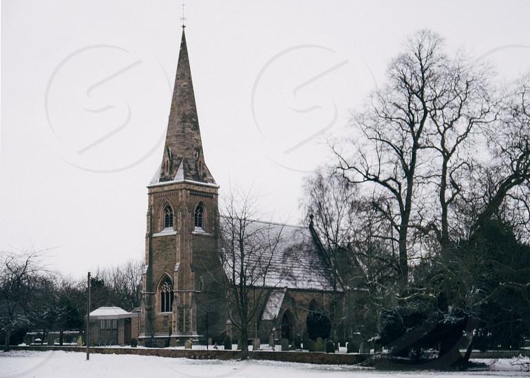 brown brick church beside green tree photo