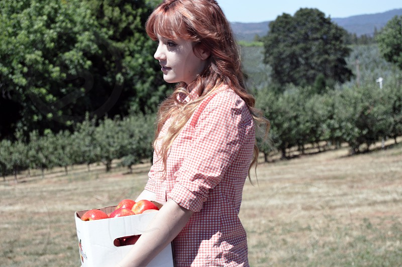 woman wearing red gingham sport shirt carrying box of fruits photo