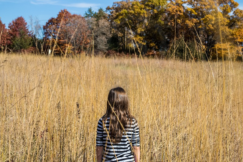 Stripes in the wild. Girl standing in wheat field trees fall. photo